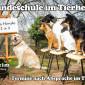 Hundeschule-im-Tierheim-kl