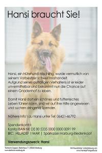 hansi-braucht-dich
