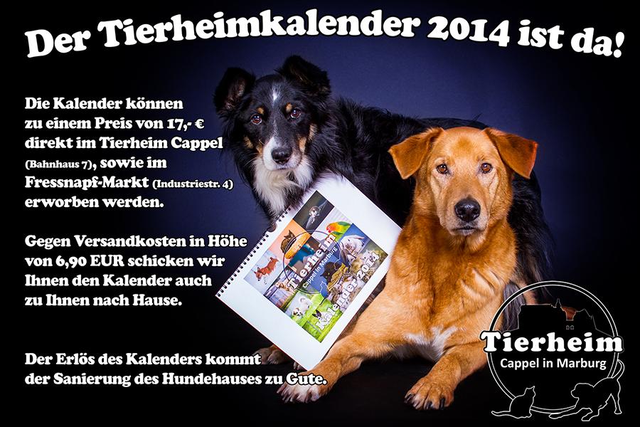 Tierheim-Cappel-Kalender