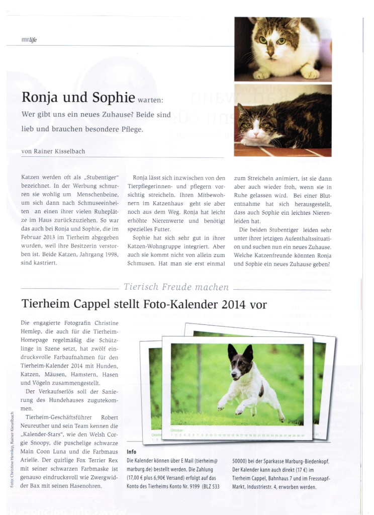 mr_life__das_magazin___Nr.10_12-.2013
