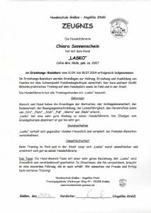 2014-07-30 13_44_39-Zeugnis Lasco.pdf - Adobe Reader
