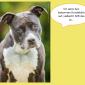 2014-09-23 22_04_06-Unsere Hunde helfen fleißig mit powerpoint (2).pptx [Schreibgeschützt] - Microso