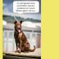 2014-09-23 22_04_37-Unsere Hunde helfen fleißig mit powerpoint (2).pptx [Schreibgeschützt] - Microso