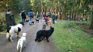 Herbstwanderung_der_Hundeschule_Lahntal__-2-_