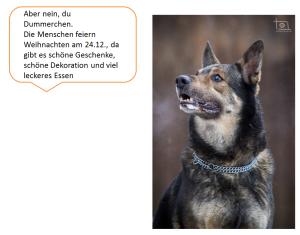 2014-12-30 19_28_32-weihnachtswunsch.pptx [Geschützte Ansicht] - Microsoft PowerPoint