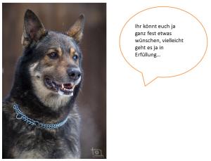2014-12-30 19_28_55-weihnachtswunsch.pptx [Geschützte Ansicht] - Microsoft PowerPoint