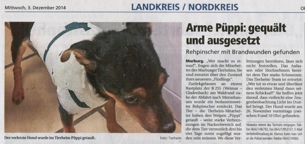 Oberhessische_Presse_3.12.2014