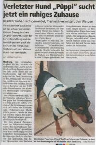 Oberhessische_Presse_4.12.2014