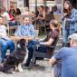Tierheim_Cappel_Film_Filmdreh_Marburg_Stadt_Making_Off_erster_Tag (16)