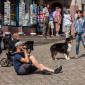 Tierheim_Cappel_Film_Filmdreh_Marburg_Stadt_Making_Off_erster_Tag (7)