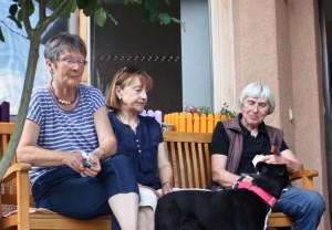 Das ist KEIN Hundekuchen...... .Foto Tierheim Marburg