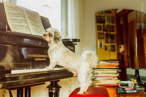 Respighi, der kleine Musikfan
