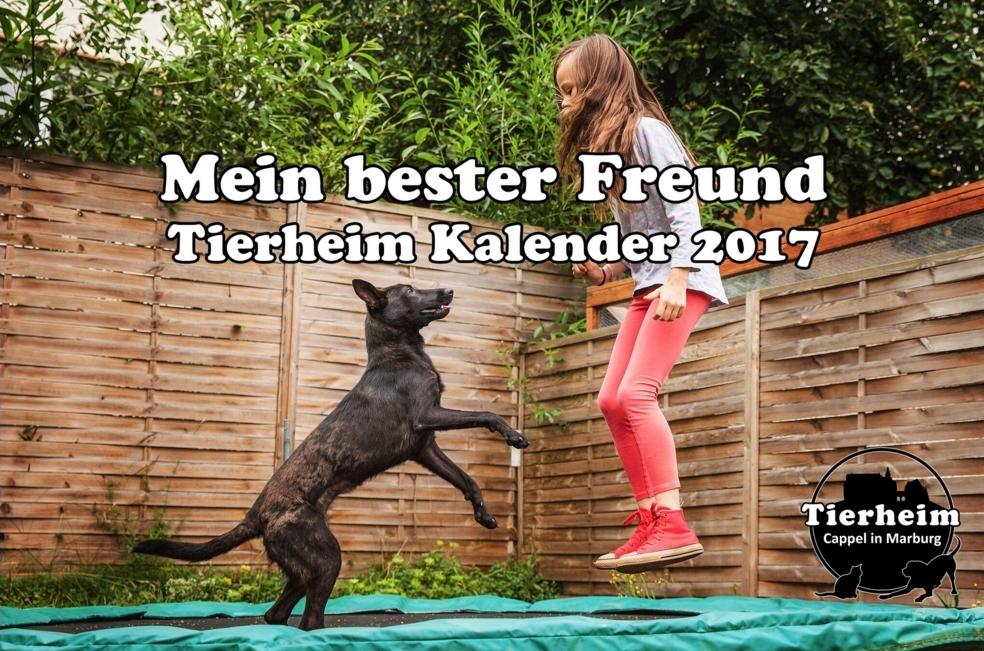 titel-tierheim-kalender-2017-foto-hemlep