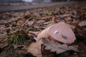 Koederfunde-verunsichern-Hundehalter, Foto Oberhessische Presse